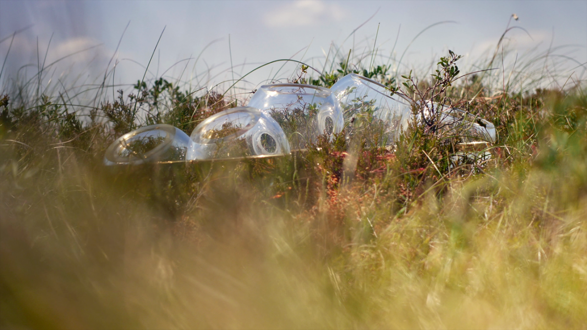 A series of interconnected clear glass bubbles sit in the landscape. The glass is partially filled with water.